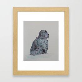 Tibetan Terrier Sitting Framed Art Print