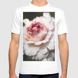 October rose T-shirt