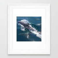 dolphin Framed Art Prints featuring Dolphin by WonderfulDreamPicture