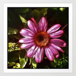 Iridescent Pink... Art Print