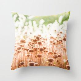 Winter Sun  Throw Pillow