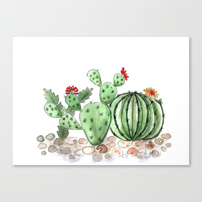 Cactus watercolor illustration Canvas Print