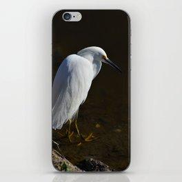 Immature Snowy Egret iPhone Skin