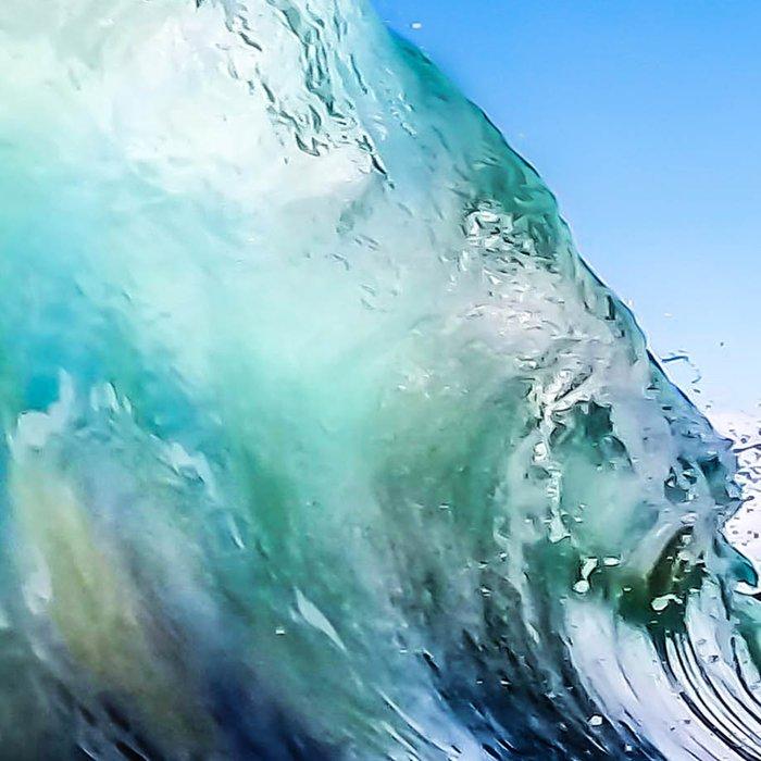 Tropical Wave Leggings