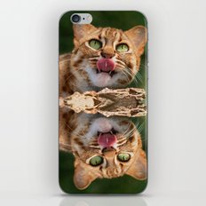 RUSTY SPOTTED CAT LICK iPhone & iPod Skin