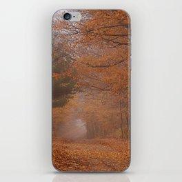 Autumn Path iPhone Skin