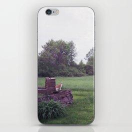 zucca in wonderland iPhone Skin