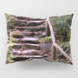 Old Wet Stone Steps Pillow Sham