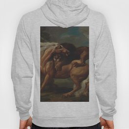 George Stubbs - A Lion Attacking a Horse Hoody