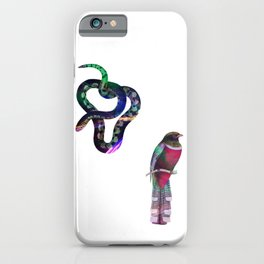 Snake and Bird Drawing iPhone Case