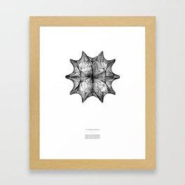 The Calabi-Yau Manifold - White Framed Art Print