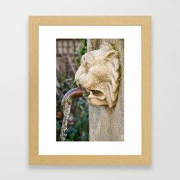 Funtain Framed Art Print
