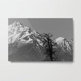 Range Metal Print