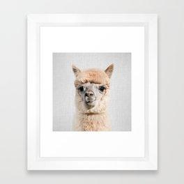 Alpaca - Colorful Framed Art Print