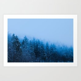Fog over snow covered forest at lake Bohinj, Slovenia Art Print