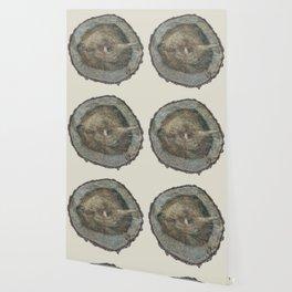Stump Rings Wallpaper