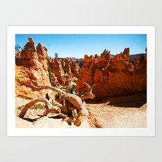 Bryce Canyon National Park. Utah, USA Art Print