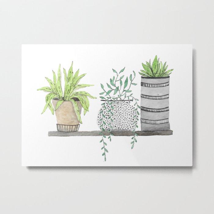 Plants 2 Metal Print