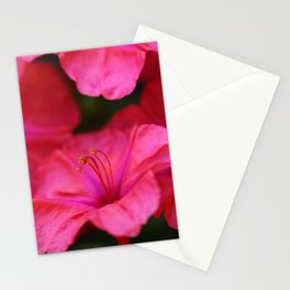 Four Oclock Flower In Red Stationery Cards