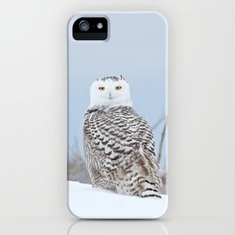 Adrift amid the drifts iPhone Case