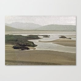 Shannon River Canvas Print