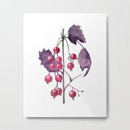 Watercolor Berries in Magenta Metal Print
