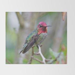 Anna's Hummingbird on the Plum Tree Throw Blanket