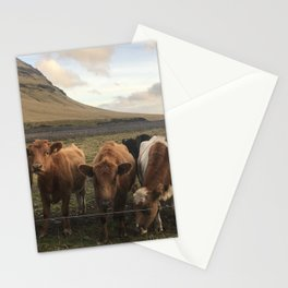 Moo Stationery Cards