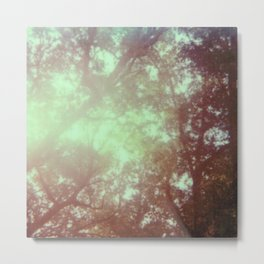 up in the trees - 600 one-step - vintage photography - sunlight - polaroid print Metal Print