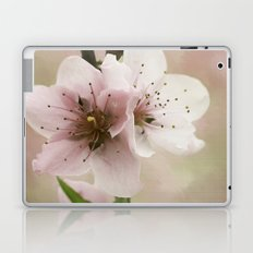 Pink Peach Blossoms Laptop & iPad Skin