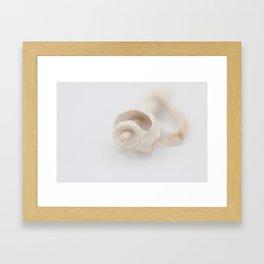 Os de coquillage Framed Art Print