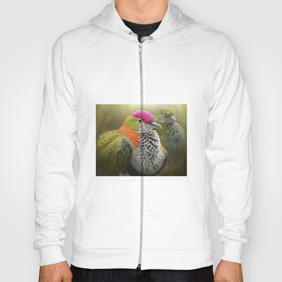 Superb Fruit Dove Hoody