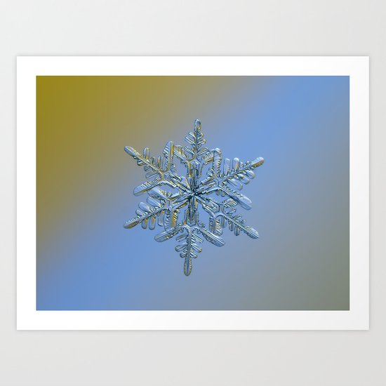 Real snowflake macro photo - 13.02.17 1 alt Art Print