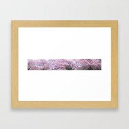 The Cherry Blossom, Tokyo Framed Art Print