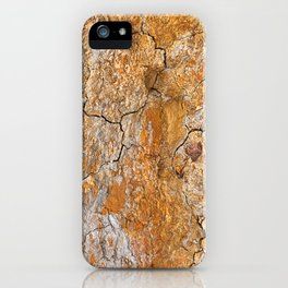 Cracked Earth Texture iPhone Case