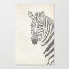 Zebz Canvas Print