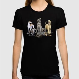 Graceful Sighthounds T-shirt
