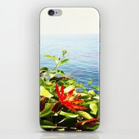 big sur iPhone & iPod Skins featuring Big Sur by Jennie Hicks - Dharma Eco Art