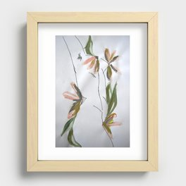 Spring Recessed Framed Print