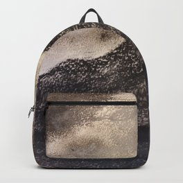 Norwegian Mountain by Gerlinde Backpack
