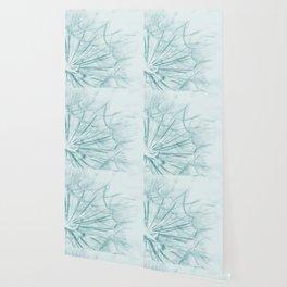 Dandelion In Blue Wallpaper