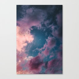 And that mystery, forever unsolved, is life. Canvas Print