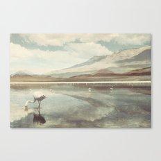 Bolivia/Peru Collaboration with Matt Shelley (Part four)  Canvas Print