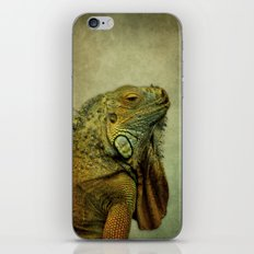 Green Iguana iPhone & iPod Skin