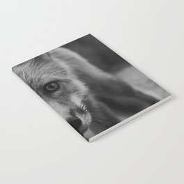 The Fox (Black and White) Notebook