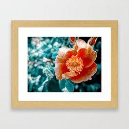 Technicolor Flower Framed Art Print
