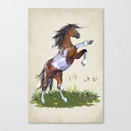Rearing Horse Canvas Print
