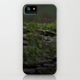 Almost Invisible  iPhone Case