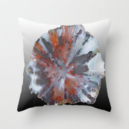 Cady Mountain Aragonite Pseudomorph (Sagenite) Throw Pillow