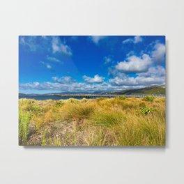 Petone Beach Grasses And Wharf Metal Print